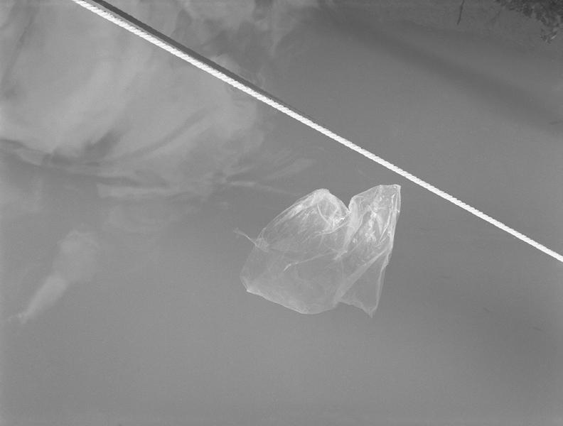 Floating # XI, 2012