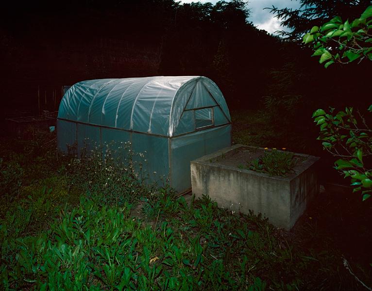 Greenhouse # III, 2002