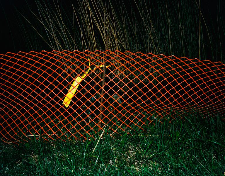 Fence # III, 2004