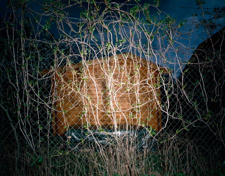 Fence # XI, 2004