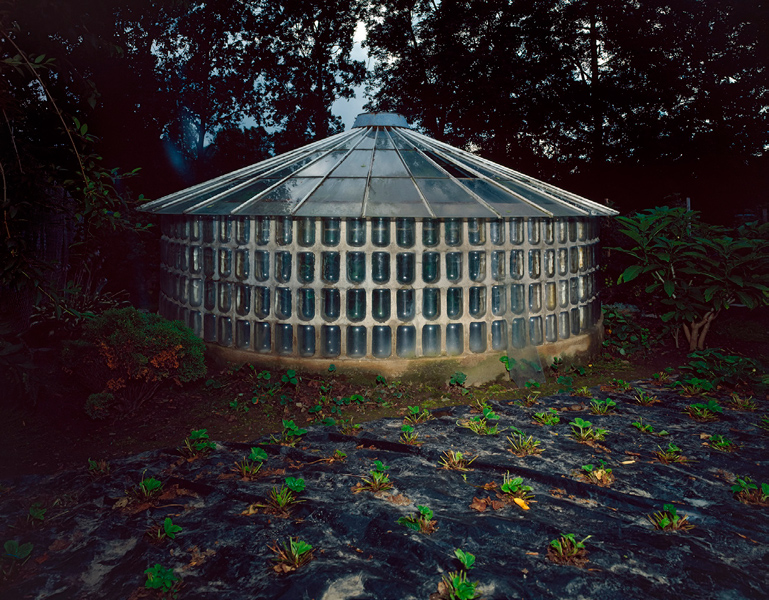 Greenhouse # IV, 2002