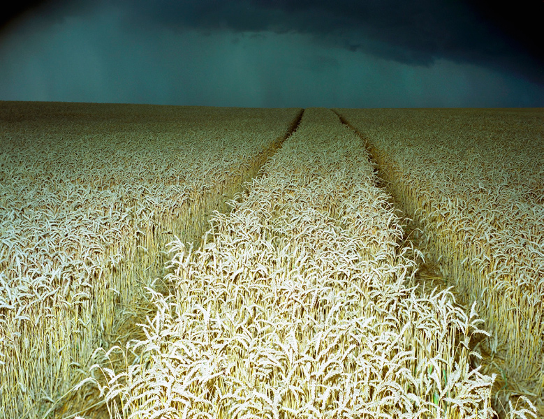 Agraria # X, 2005