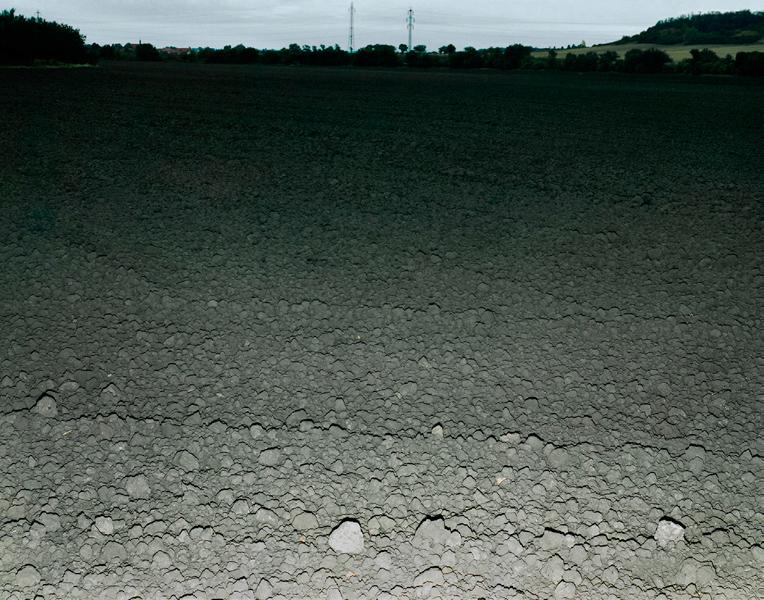 Agraria # IV, 2004