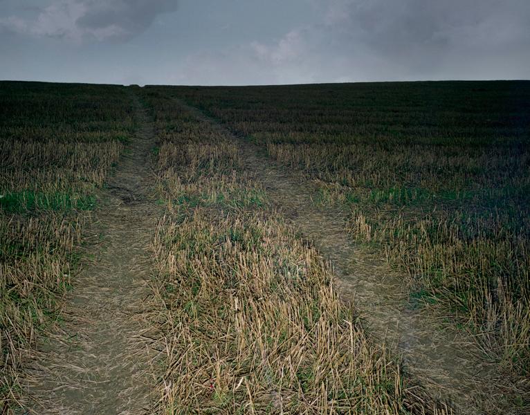 Agraria # II, 2004