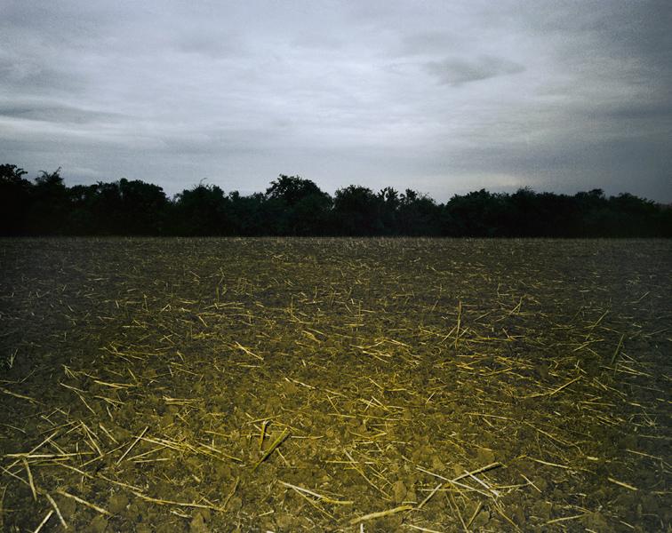 Agraria # XIV, 2006