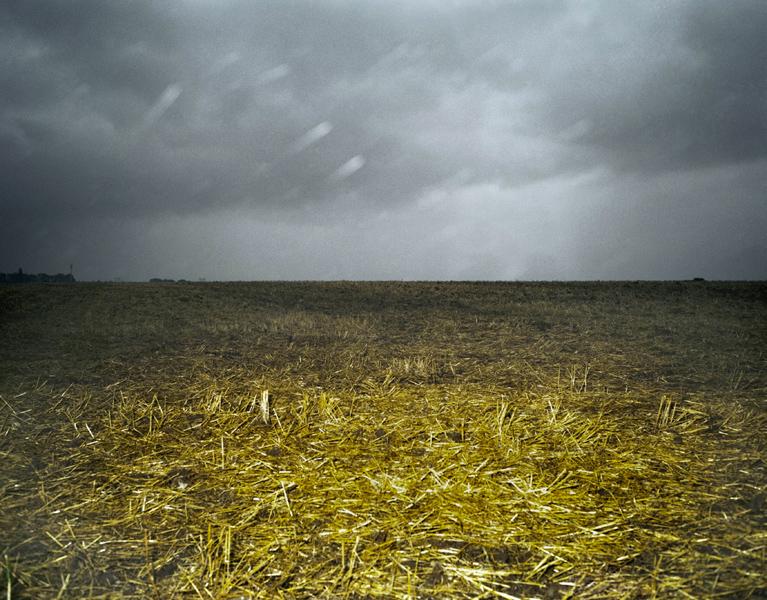 Agraria # XIX, 2006